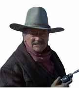 Western Movies Hats - The Shootist - Click to enlarge