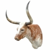 Texas Longhorn Shoulder Mounts