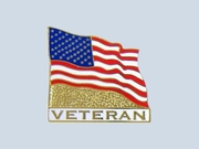 Flag Veteran Pin