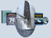 Submarine Books/Manuals and DVD's