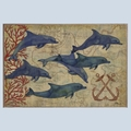 Discovery Dolphins