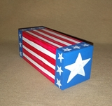 Patriotic Percussion Shaker