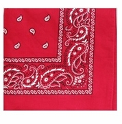 Red Square Bandanna