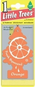 Little Tree Air Freshener24/box Orange