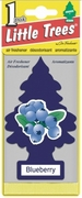 Little Tree Blueberry 1pk24 Box