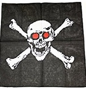 Skull Red Eye Square Bandana 12 box