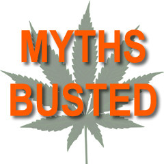 Busting common myths about cannabis and UV