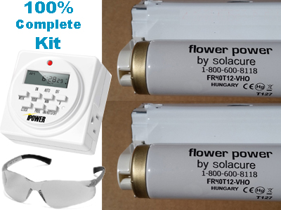Kit: Two Flower Power bulbs + 2 fixtures (4 ft) + Timer