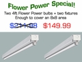 Four foot version - 2 Flower Power and fixtures