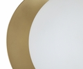 Globe Frosted Glass Wall Sconce by TOV Furniture