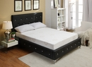 """Herbal Fusion White 10"""" Queen Memory Foam Mattress by AC Pacific"""