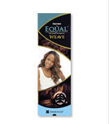Shake N Go Freetress Equal Hair Extension