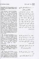 Summarized Sahih Al-Bukhari Arabic-English (x-large 7' x 9.75')