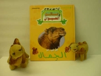 My Animal Kingdom - Camels (book and plush animals)  كل شيء عن الجمال