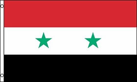 Flag of Syria: 3 x 5 ft.