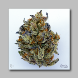 Baylien Weed Sticker - Marijuana Sticker 0018