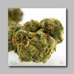 Berners Cookies Weed Sticker - Marijuana Sticker 0002