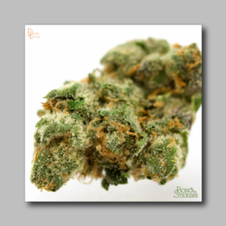Berners Cookies Weed Sticker - Marijuana Sticker 0004