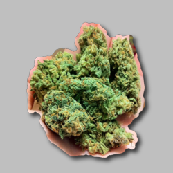 Afghani Bud Sticker - Marijuana Sticker
