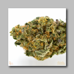 Animal Cookies Bud Sticker - Marijuana Sticker - devilslettuceph