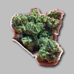Diamon Dog Weed Sticker - Marijuana Sticker