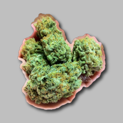 Jack Herer Weed Sticker - Marijuana Sticker