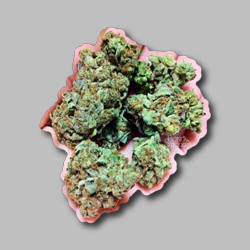 OG Kush Weed Sticker - Marijuana Sticker