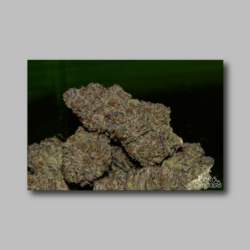 The White Weed Sticker - Marijuana Sticker