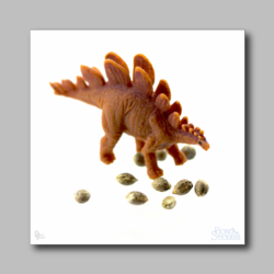 Dino With Marijuana Seeds - Marijuana Sticker