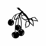 Cherries on branch Decal