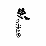 Grapes on a vine Decal