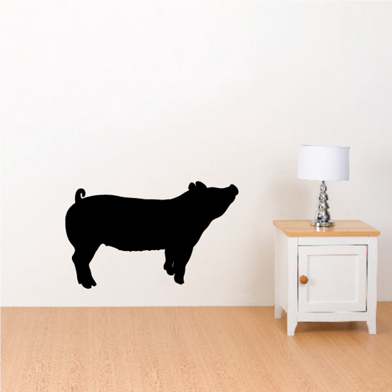 Pig Looking Up Decal