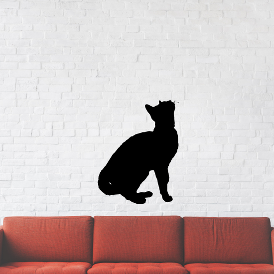 Attention Cat Decal