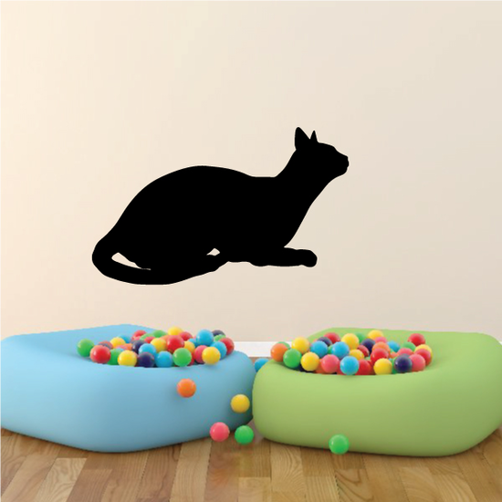 Abyssinian Cat Resting Decal
