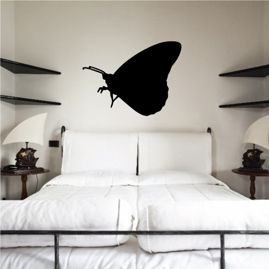 Butterfly Wall Decal - Vinyl Decal - Car Decal - NS038