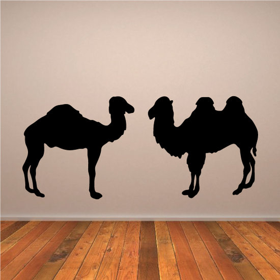 Camel Couple Decal