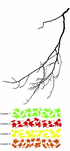 Tree Branches with falling leaves Decal