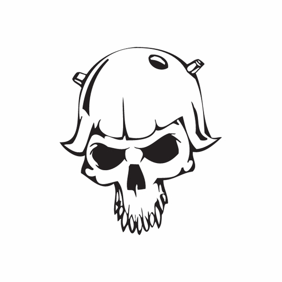 Skull Wall Decal - Vinyl Decal - Car Decal - DC 8046