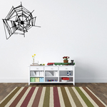 Hectic Spider Web Decal