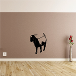 Boer Goat Looking Down Decal