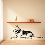 Resting Timber Wolf Decal