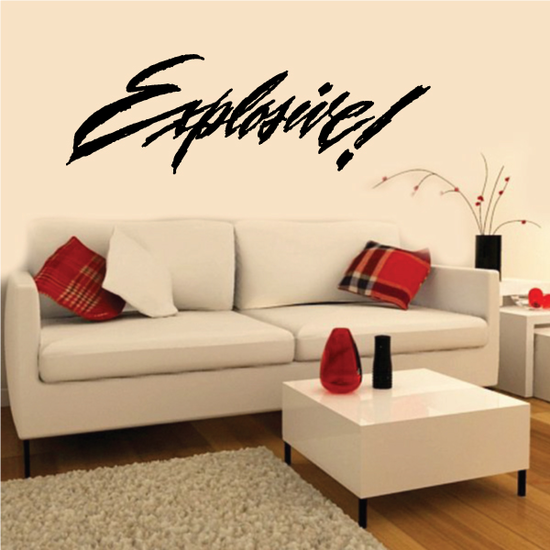 Explosive Wall Decal - Vinyl Decal - Car Decal - Business Sign - MC320