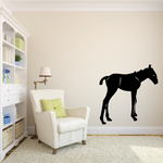 Curious Standing Foal Decal