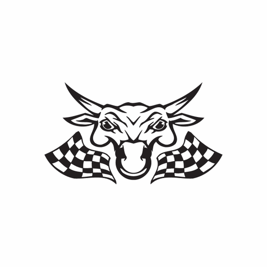 Racing Graphic Wall Decal - Vinyl Decal - Car Decal - DC 8035