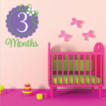 3 Month Wall Decal