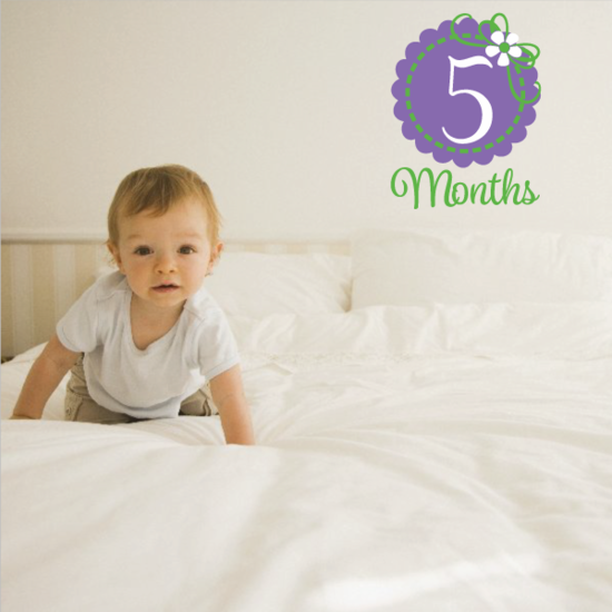 5 Month Wall Decal