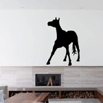 Balancing Standing Foal Decal