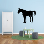 Standing Curious Horse Decal