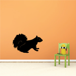 Squirrel Looking Decal