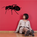 Big Ant Decal
